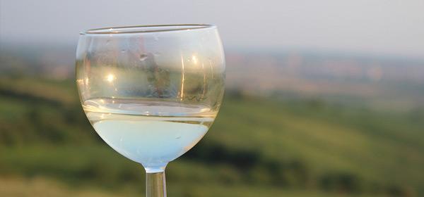 vini-abruzzo2